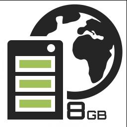 V8GB SSD